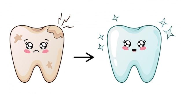 Ładny charakter kreskówka ząb kawaii