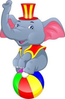 Ładny elphant siedzi na kolorowej piłce