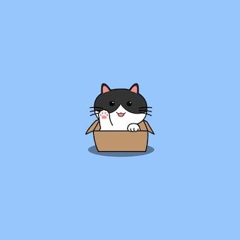 Ładny kot macha łapą w kreskówce pudełkowej