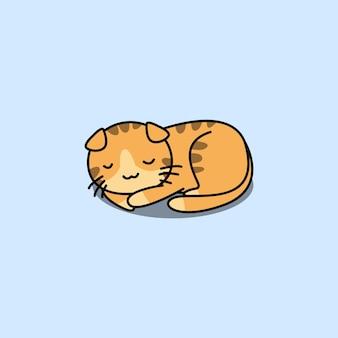 Ładny kot szkocki zwisłouchy śpi kreskówka
