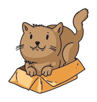 Ładny Kot Ukrywa Się W Tekturowym Pudełku Na Białym Tle Premium Wektorów