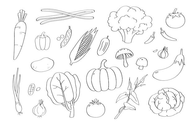 Ładny kreskówka warzyw