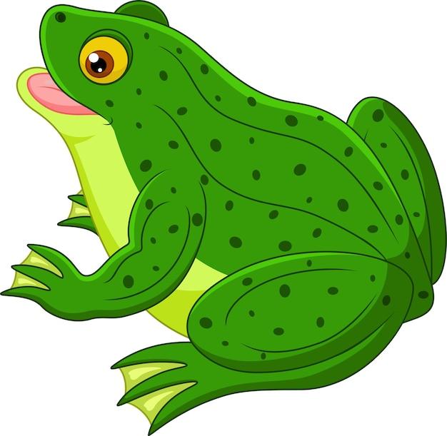 Ładny kreskówka żaba