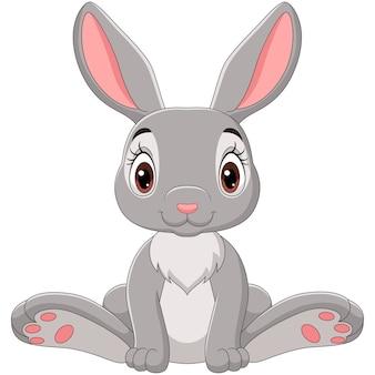 Ładny królik kreskówka siedzi
