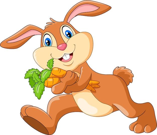 Ładny królik trzymając marchewkę na białym tle