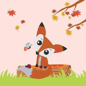 Ładny lis jesienią