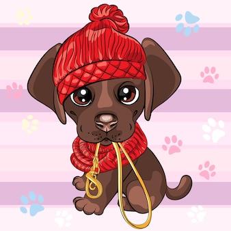 Ładny mały brązowy szczeniak labrador retriever pies chce chodzić
