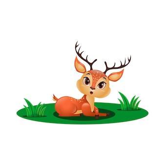 Ładny mały jeleń siedzi na trawie