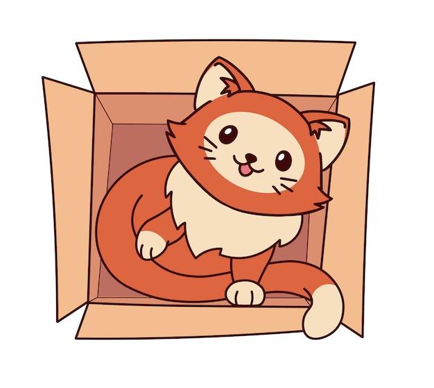 Ładny mały kot leżący w pudełku.