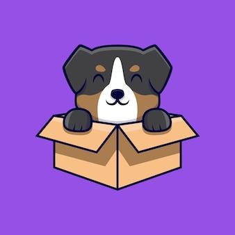 Ładny owczarek australijski siedzi w pudełku kreskówki