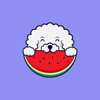 Ładny pies bichon frise jedzenie arbuza ikona ilustracja kreskówka