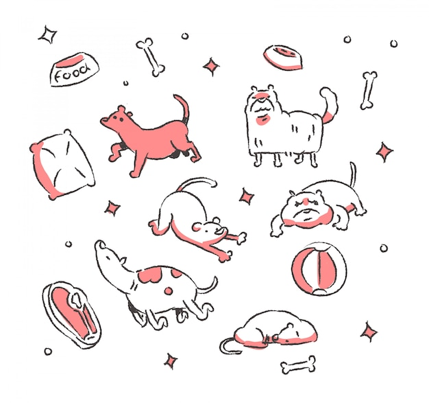 Ładny pies doodle