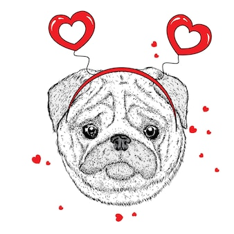 Ładny pies i serca walentynki na białym tle