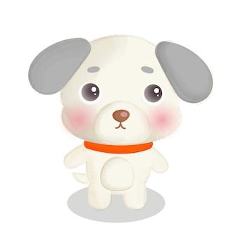 Ładny pies na białym tle.