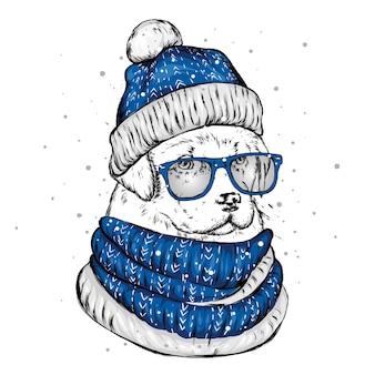 Ładny pies w czapce zimowej.