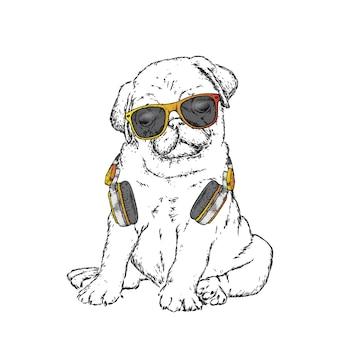 Ładny pies w okularach.