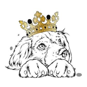 Ładny pies z koroną na głowie.
