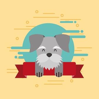 Ładny pies zwierzę domowe na dekoracji wstążki