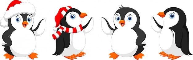 Ładny pingwin świąteczny, zestaw znaków pingwina.