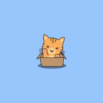 Ładny pomarańczowy kot macha łapą w pudełku kreskówki