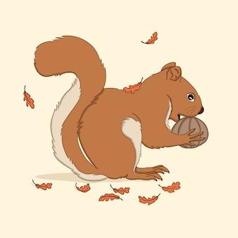 Ładny ręcznie rysowane jesień wiewiórka ilustracja