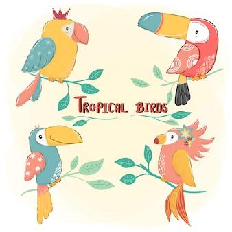 Ładny rysunek płaski wektor zestaw tropikalnych ptaków, kolorowe lato