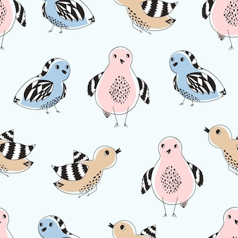 Ładny wzór z kolorowymi ręcznie rysowanymi ptakami doodle