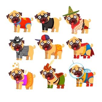 Ładny zabawny pies mops w zestawie kolorowe śmieszne kostiumy