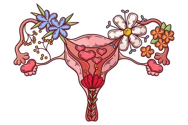 Ładny żeński układ rozrodczy z kwiatami
