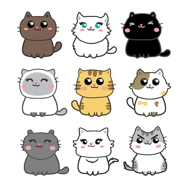 Ładny zestaw kotów