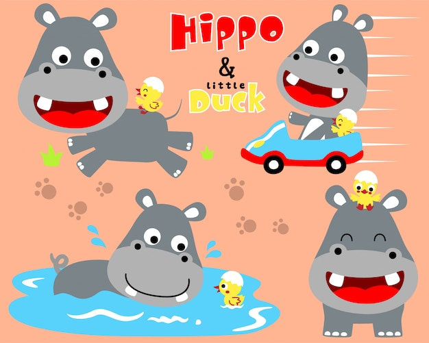 Ładny zestaw kreskówka hipopotam
