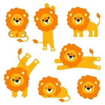 Ładny zestaw lwa dzikie zwierzę