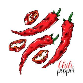 Ładny zestaw różnych papryczek chili.