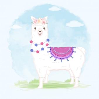 Lama ilustracja kreskówka