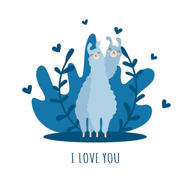 Lama z alpaką, sercami i wieloma szczegółami. kocham cię