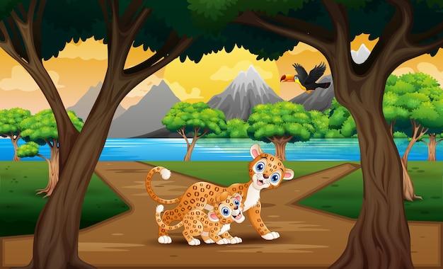 Lampart ze swoim młodym w krajobrazie przyrody
