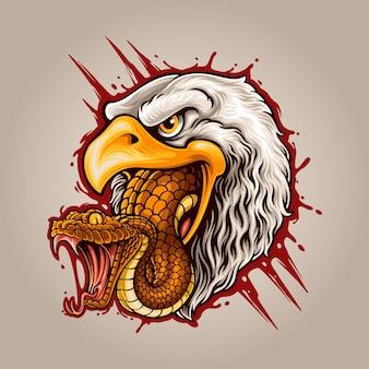 Łańcuch pokarmowy z orłem