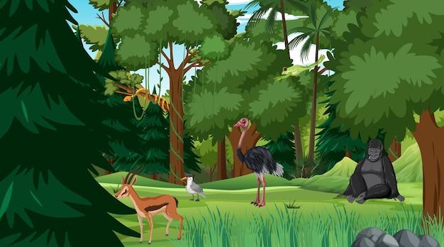 Las deszczowy w scenie dziennej z różnymi dzikimi zwierzętami