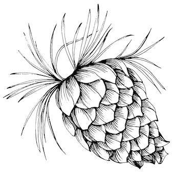 Las jesień i zima natura. świerkowe gałęzie, żołędzie, szyszki, jesienne liście. element ilustracji na białym tle. ręcznie rysować dziki kwiat