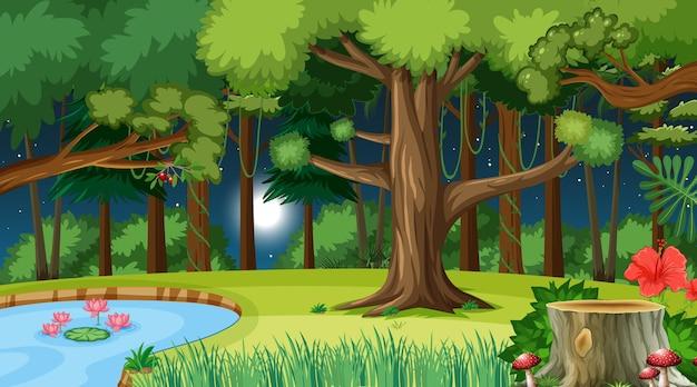 Las natury w nocy scena z wieloma drzewami