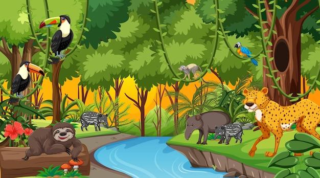 Las o zachodzie słońca scena z różnymi dzikimi zwierzętami