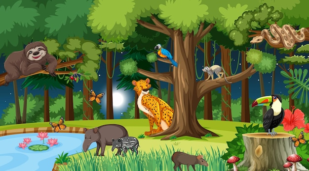 Las w nocy scena krajobrazu z różnymi dzikimi zwierzętami