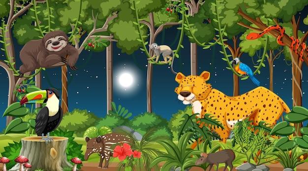 Las w nocy scena z różnymi dzikimi zwierzętami
