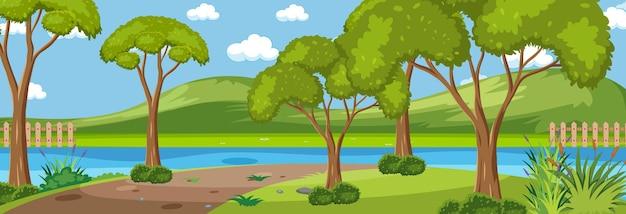 Las wzdłuż rzeki poziomej sceny w ciągu dnia z wieloma drzewami