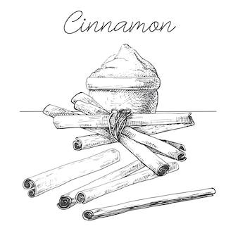Laski cynamonu, proszek cynamonowy. ręcznie rysowane przyprawa na białym tle.