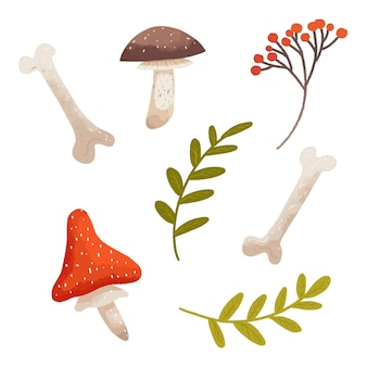 Lasowy zestaw grzybów, gałązek i kości na halloween