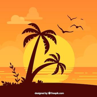 Lata tło z drzewkami palmowymi przy zmierzchem