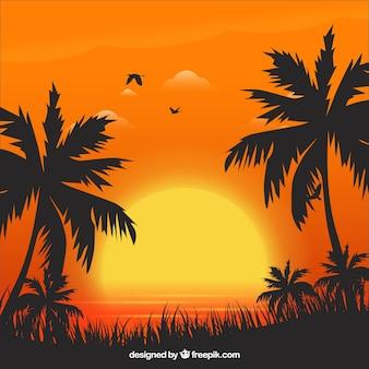 Lata tło z zmierzchem i drzewkami palmowymi