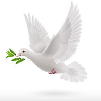 Latająca gołębica