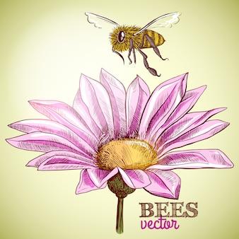 Latająca pszczoła miodna i kwitnących kwiatów tło